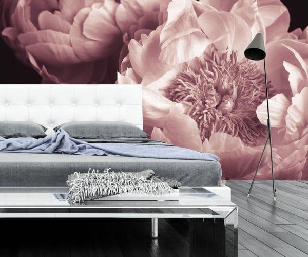 Peony_flowers_pastel_pink